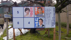 Observation on Japan Lower House Election